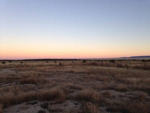River Watch Beef – Colorado sunset in pasture